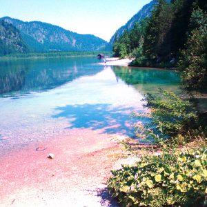 Wasseraufbereitung, Teich & See, Öko-konform