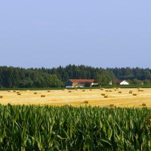 Biologische, zertifizierte, aktivierte Agrarprodukte und Futtermittel.